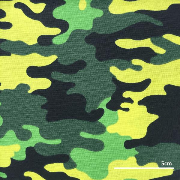 SFMF011