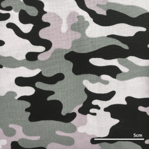 SFMF010